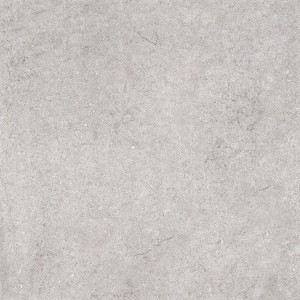 Gres 20mm City Grey Fossil  60x60x2